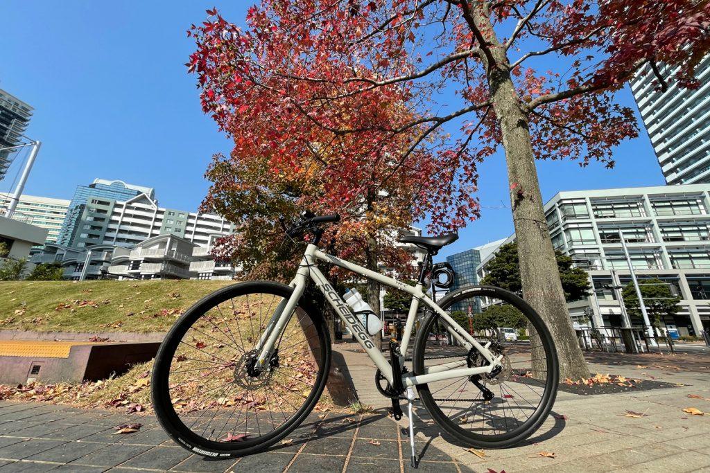 ダイエットがてらクロスバイクで行ってきましたよ!秋を感じる季節になってきました♪